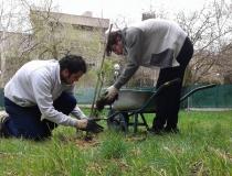 voluntarios-siembran (2)